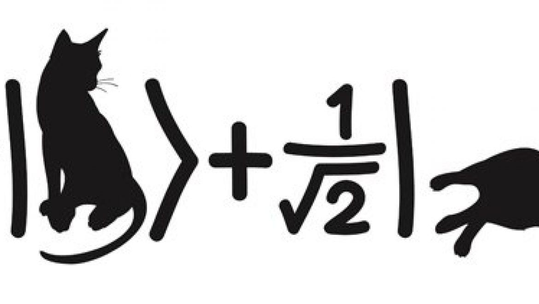 Esperimento a doppie fenditure, il primo passo per capire la meccanica quantistica